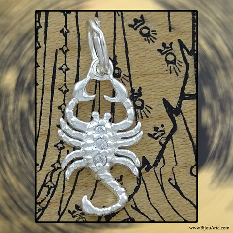 Sterling Silver Astrological Charm: SCORPIO