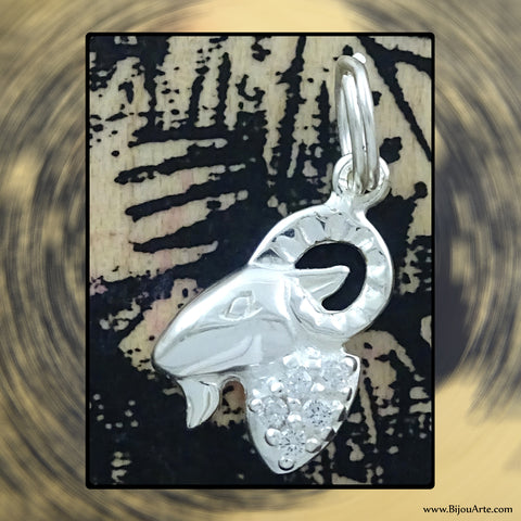 Sterling Silver Astrological Charm: CAPRICORN