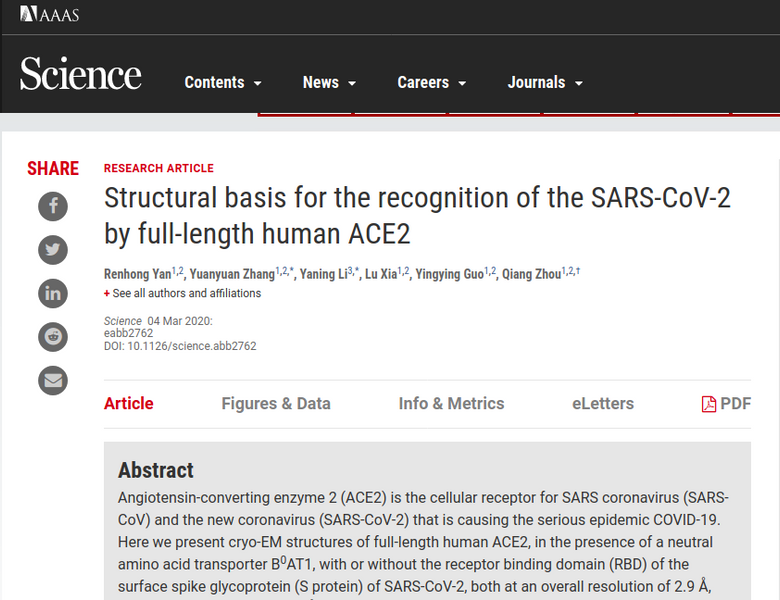 How SARS-CoV-2 might get into your cells