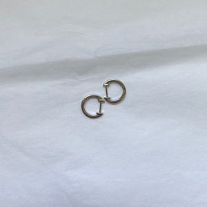 Everyday Huggie Earring