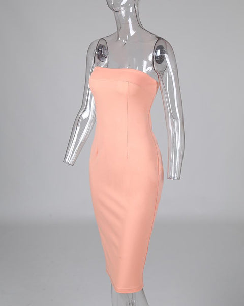 Solid Sleeveless Tube Bodycon Dress