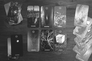 Savran Forest Tarot Deck 78 Cards