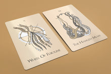 Load image into Gallery viewer, Yoni Tarot Deck 78 Cards Pre-Order