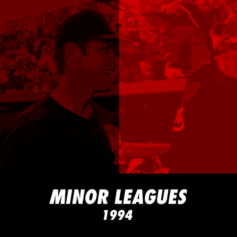 Michael Jordan Minor League Baseball