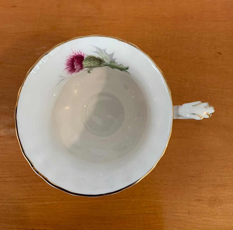 Highlands Thistle Royal Albert Teacup