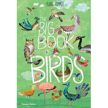 Load image into Gallery viewer, The Big Book of Birds by Yuval Zommer