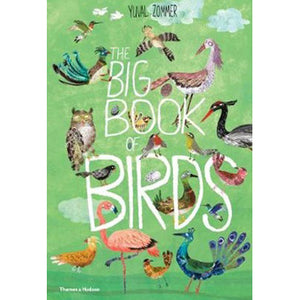 The Big Book of Birds by Yuval Zommer