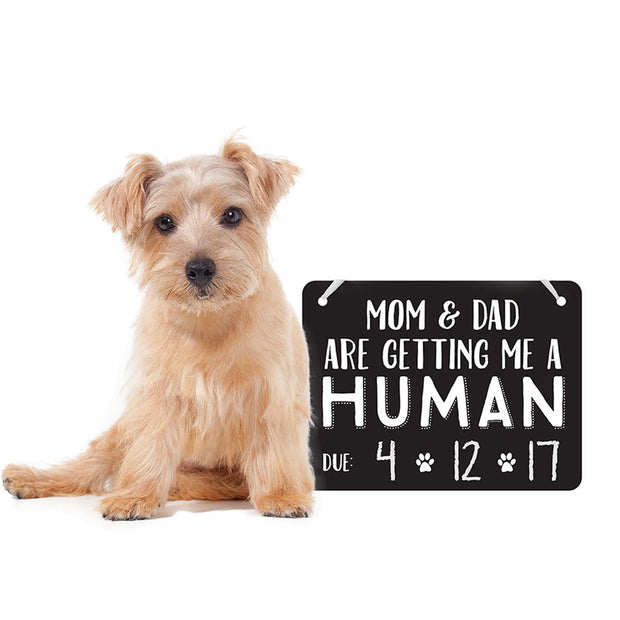 Pet's Baby Announcement Chalkboard