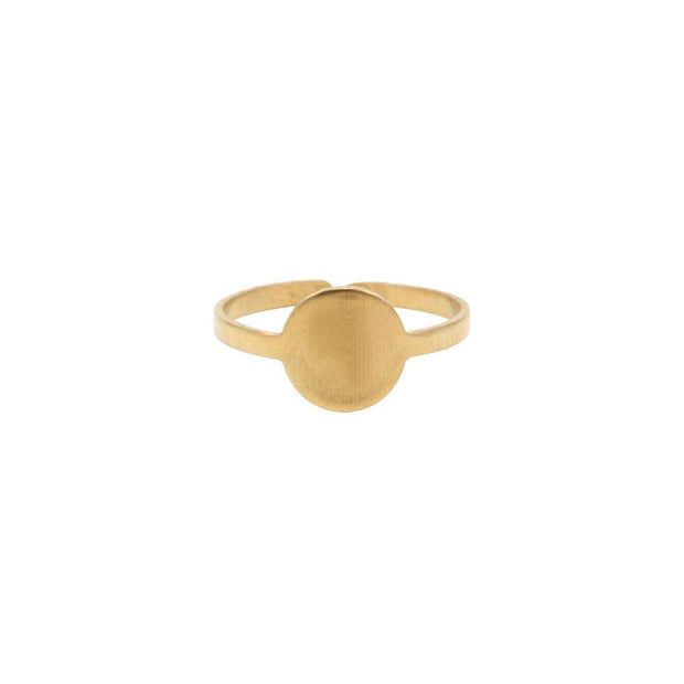 Raw Brass Mini Circle Ring - Fruit of the Vine