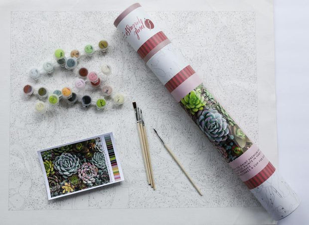 Sensitive Succulents | Pink Picasso Paint by Numbers Kit | Fruit of the Vine Boutique