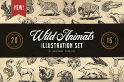 Wild Animals - Illustration Set - HTC GmbH