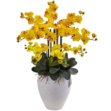 Phalaenopsis Orchid with White Planter