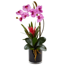 Orchid and Bromeliad in Glossy Black Cylinder