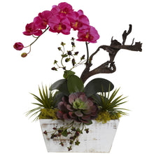 Orchid & Succulent Garden with White Wash Planter