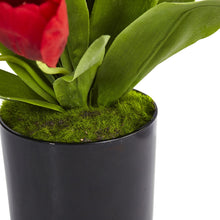 Tulips in Black Glossy Cylinder