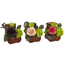 Rose and Mini Green in Chest (Set of 3)