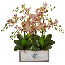 Phalaenopsis Orchid Arrangement in Decorative Wood Vase