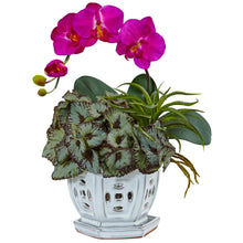 Mini Phalaenopsis Orchid and Succulent in Planter