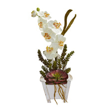 Phalaenopsis Orchid & Succulent Artificial Arrangement in Chair Planter