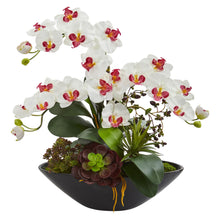 Phalaenopsis Orchid and Mixed Succulent Garden Artificial Arrangement in Black Vase