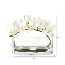Phalaenopsis Orchid Artificial Arrangement in Glass Vase