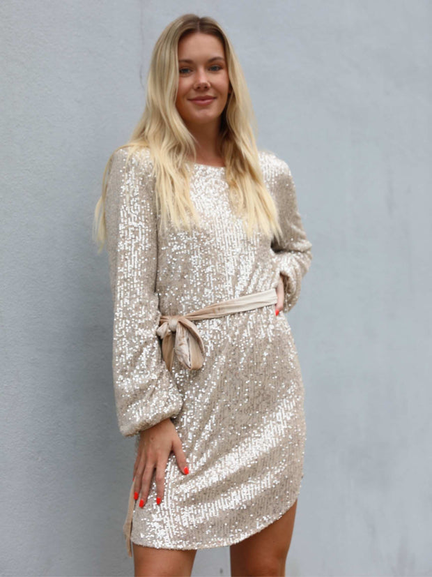 Holiday Sequin Dress