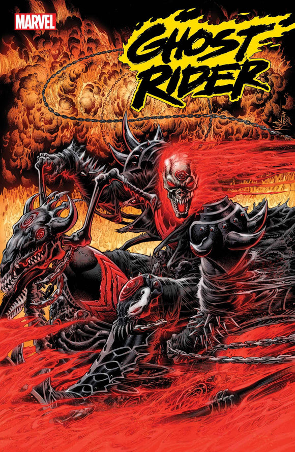 GHOST RIDER ANNUAL #1 HOTZ KNULLIFIED VAR - MARVEL COMICS - Black Cape Comic