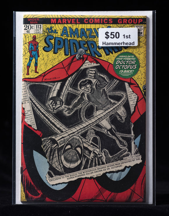 Amazing Spider-Man (1963) #113 - MARVEL COMICS - Black Cape Comics