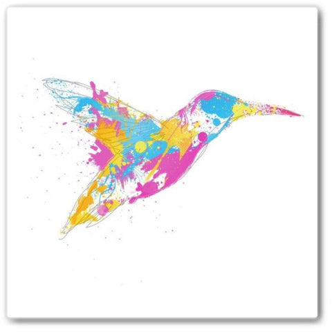 bird of colour Wall Art Print