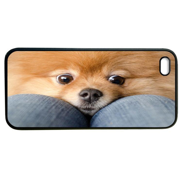 Chihuahua haha iphone5 Case Cover