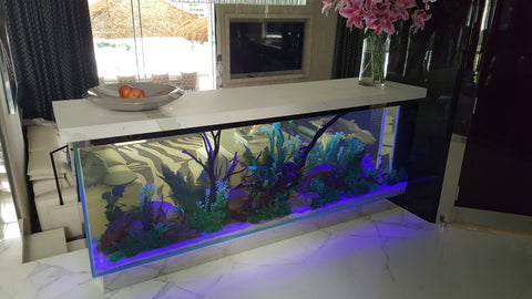Custom 9ft aquarium by Aquatic Creations