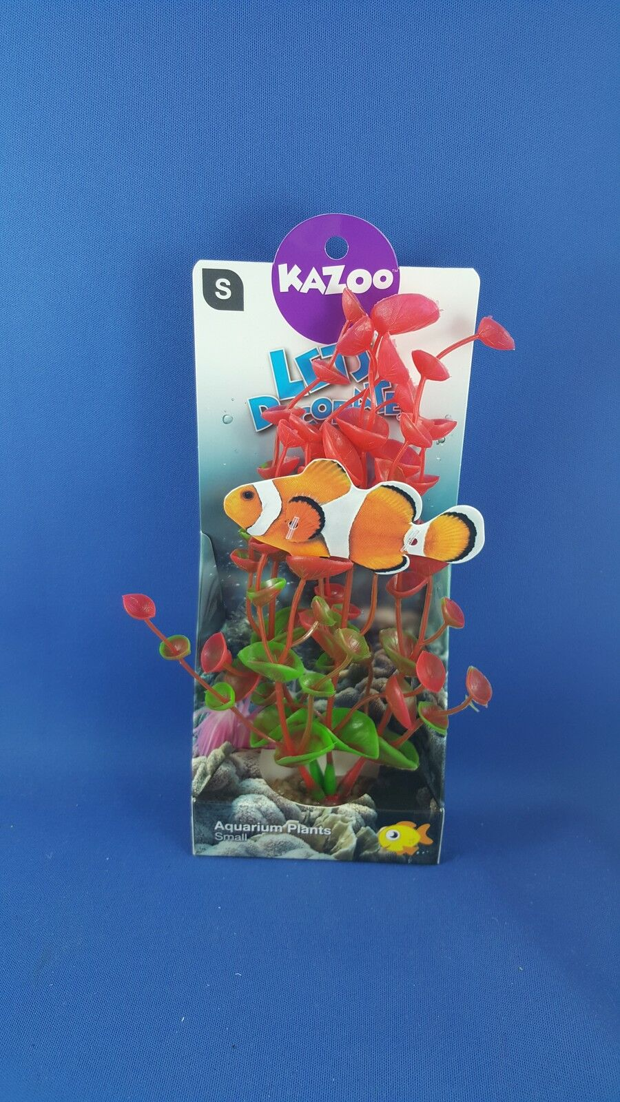 Kazoo aquarium plant, small with red & green leaves with solid pebble base
