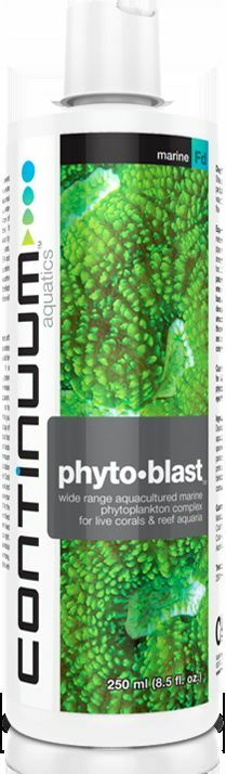 Continuum Phyto Blast 250ml Bottle.