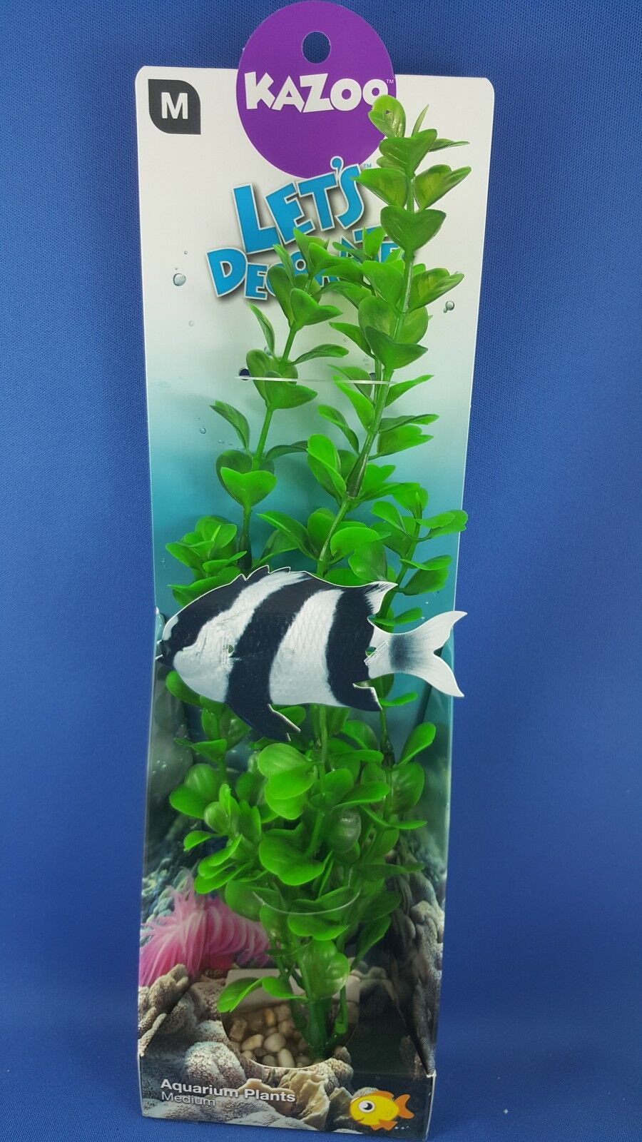 New Kazoo aquarium plant, medium with green small leaves with solid pebble base