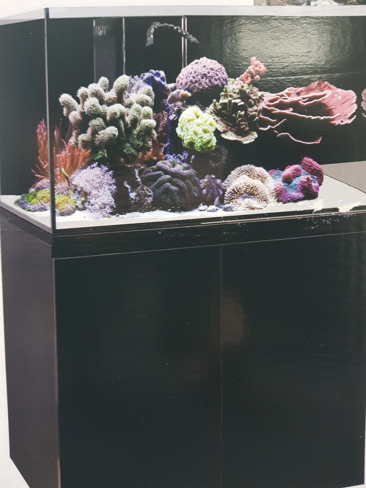 AquaOne ReefSys 255lt with cabinet and sump in Black