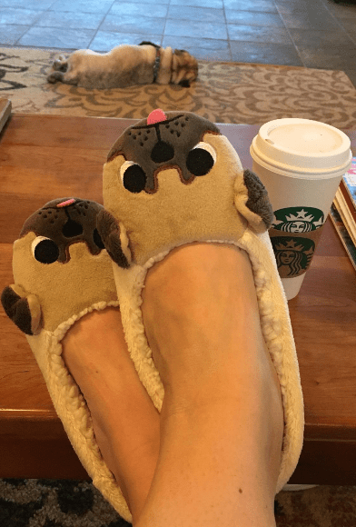 Pug Crazy Pug Plush Slippers