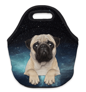 Pug Crazy Pug Lunch Bag (Space)