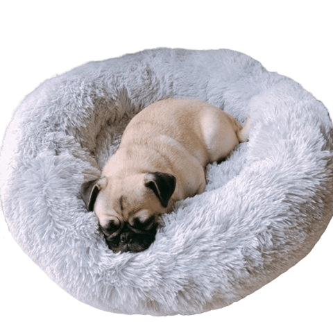 Pug Crazy Calming Donut Dog Bed