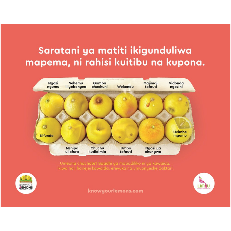 Swahili Canvas Chart (Limau Cancer Connection) - Know Your Lemons Breast Cancer Awareness