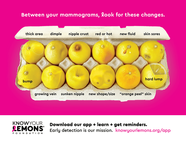 12 Signs Of Breast Cancer Magnets Pink Cream Or Coral Know Your Lemons Breast Cancer Awareness Materials