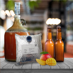 Hey Homebrewers, Want to Learn How to Make Fruity Beers at Home?