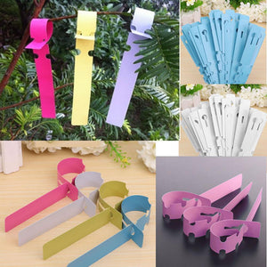 100pcs Garden Plant Pot Markers Plastic Stake Tied Tags Court Nursery Seed Labels Decor