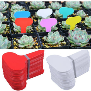 50 pcs Nursery Premium Label Plastic Plant Type T Label Garden Plant Pot Planter Vegetable Label Tag