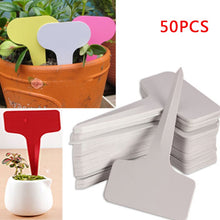 Charger l'image dans la galerie, 50pcs 6x10cm White Plastic PVC Plant T-type Tags Markers Nursery Garden Labels Nursery Pots Garden Decoration Seedling Tray