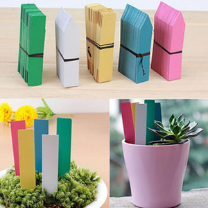 100Pcs Tree Fruits Seedling Garden Flower Pot Plastic Tags Sign Reusable PVC Plants Hang Tag Labels Classification Tools