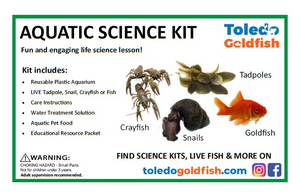 Toledo Goldfish Aquatic Science Kits