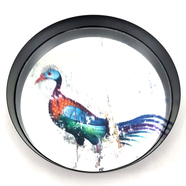 Mirror with Coloured Print