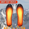2021 SMART HEAT INSOLES