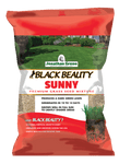 Black Beauty Sunny Grass Seed