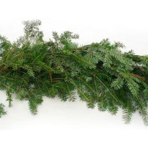 Balsam Fir Roping - Multiple Sizes
